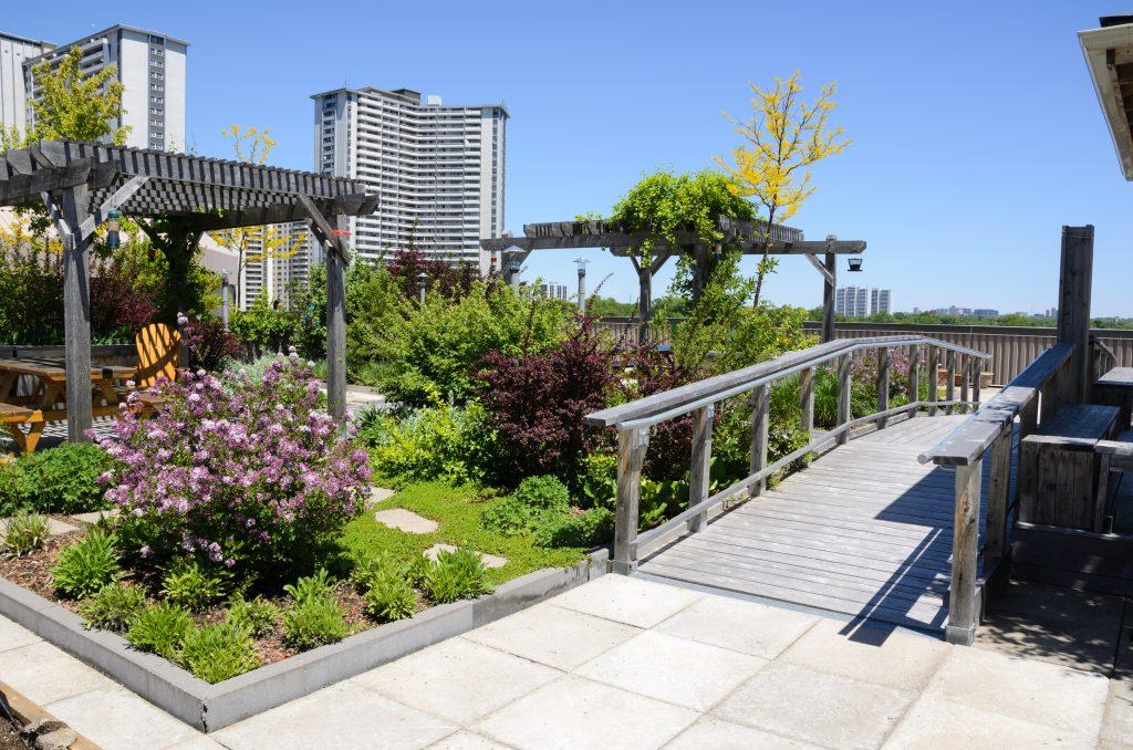 Paisaje urbano con plantas tratadas con Hydretain