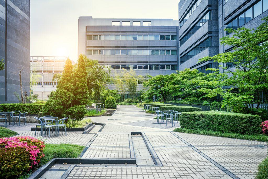 Paisaje urbano, plantas tratadas con Hydretain