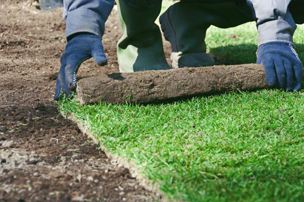 Hydretain - Plantación de grama