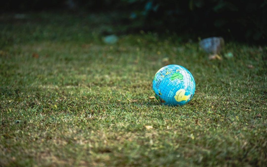 El mundo en la jardinería