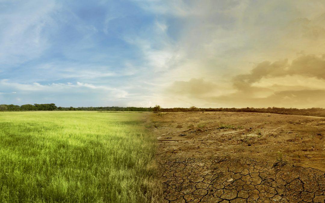 Todo sobre las sequías repentinas