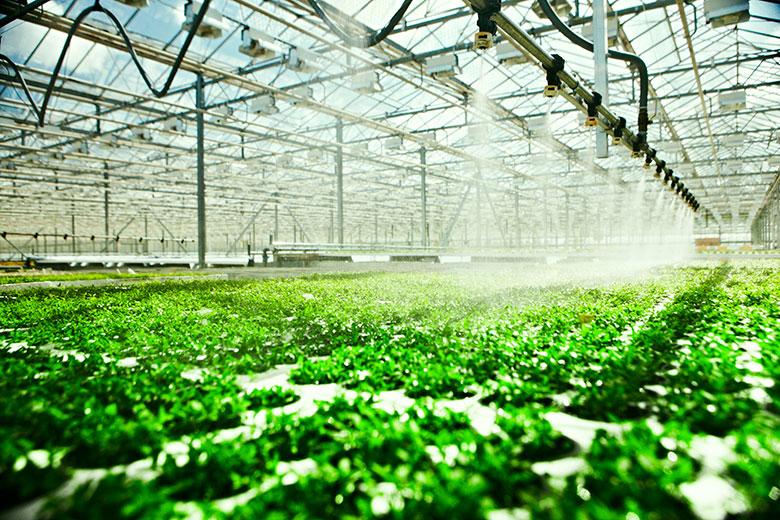 4 tecnologías que están revolucionando la industria agrícola en 2020