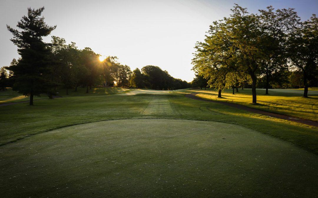 Los tipos de césped en los campos de golf. Conozca las 4 principales variedades